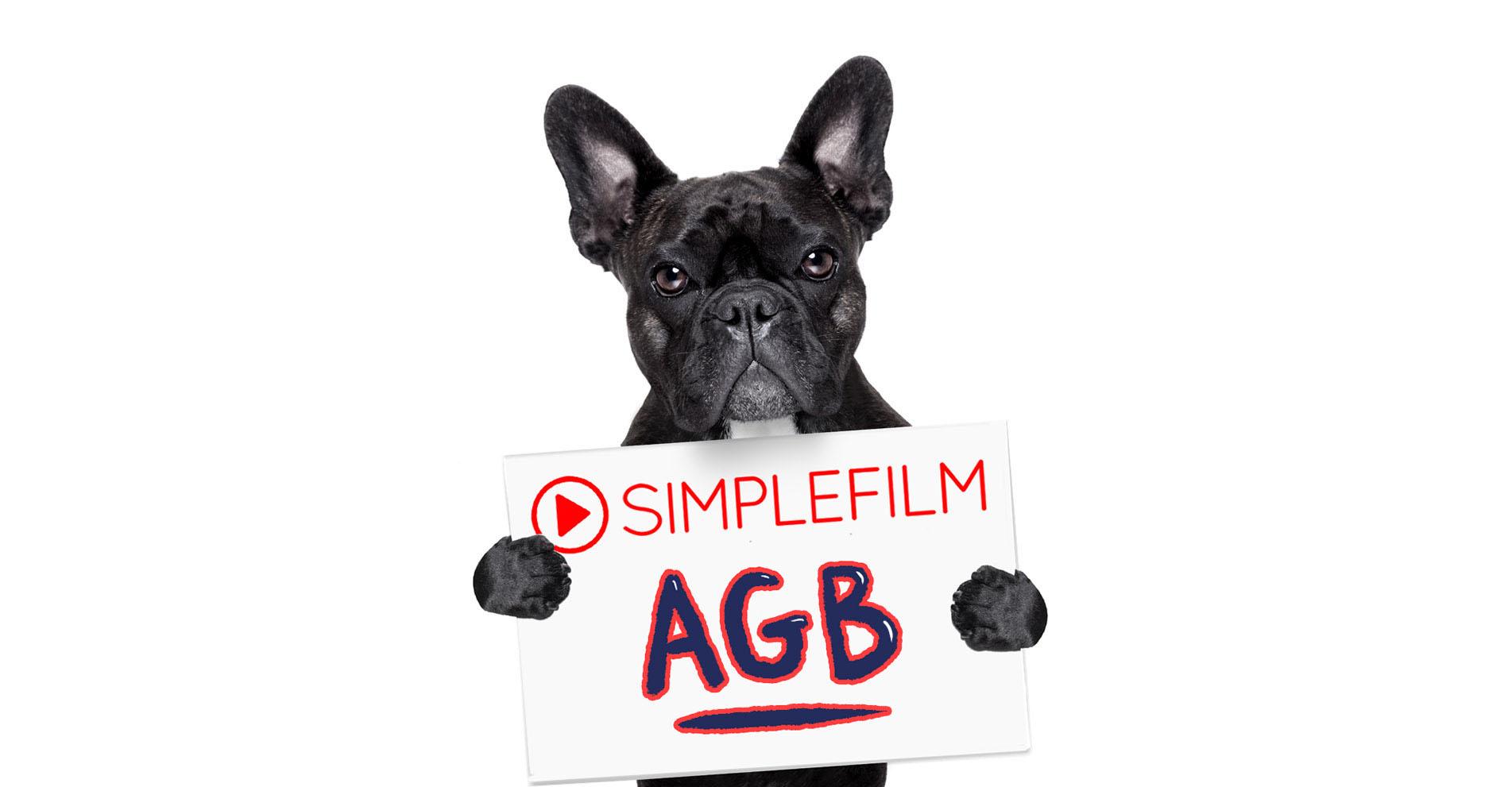 AGB`s von Simplefilm - Film-Agentur