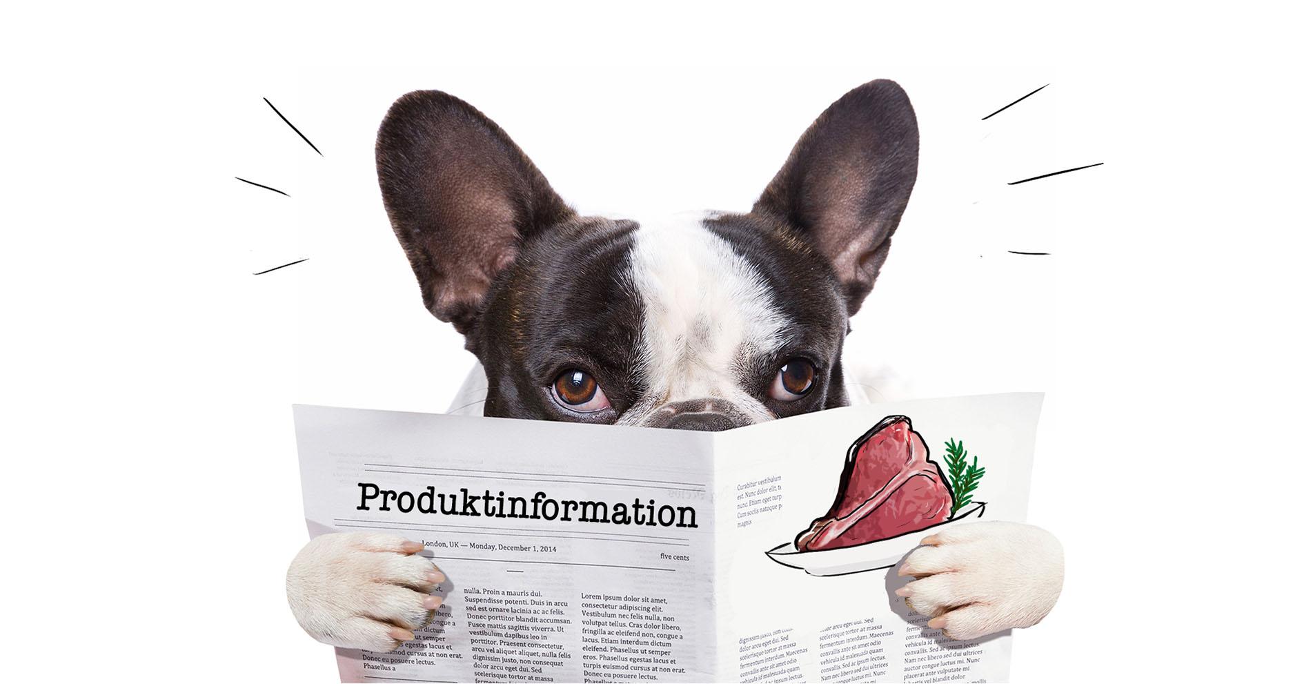 Produktvideos erstellen lassen - Erklärungsbedürftiges durch Filmproduktion simpel erklären